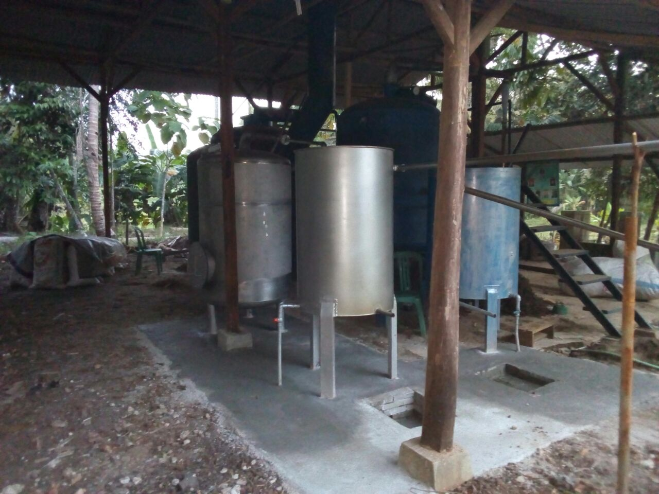 The Distillation Process For Wild Harvest Indonesia Is Direct Steam Distillation